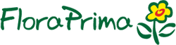 Bei FloraPrima erwarten Sie schöne Blumensträuße in bester Qualität zu fairen Preisen mit beispielhaft gutem Kundenservice.Bei FloraPrima erwarten Sie schöne Blumensträuße in bester Qualität zu fairen Preisen mit beispielhaft gutem Kundenservice.