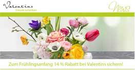 14 % Rabatt auf das gesamte Blumen & Geschenke Sortiment* von Valentins.